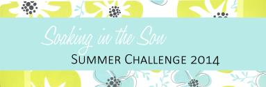 Summer Challenge 2014 Header